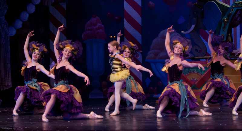 nutcracker article