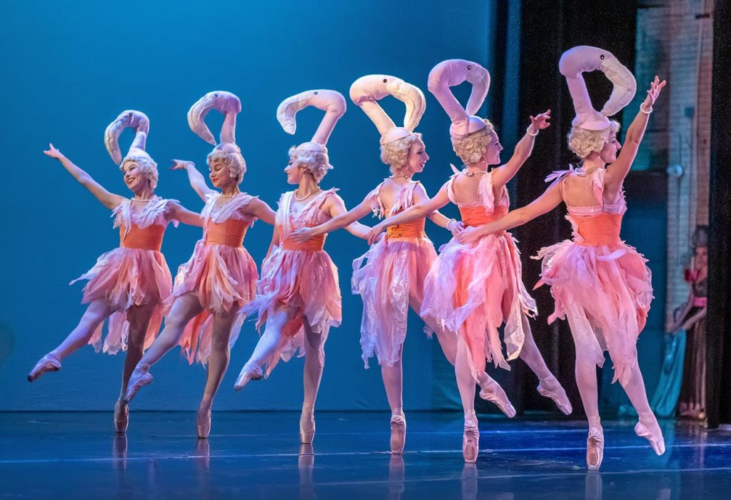 "Six American Midwest Ballet company dancers are dressed pink skirts and bodices adorned with feathers.  They wear tall headpieces in the shape of flamingo heads as they perform in AMB's ballet, ""Party Animals""."
